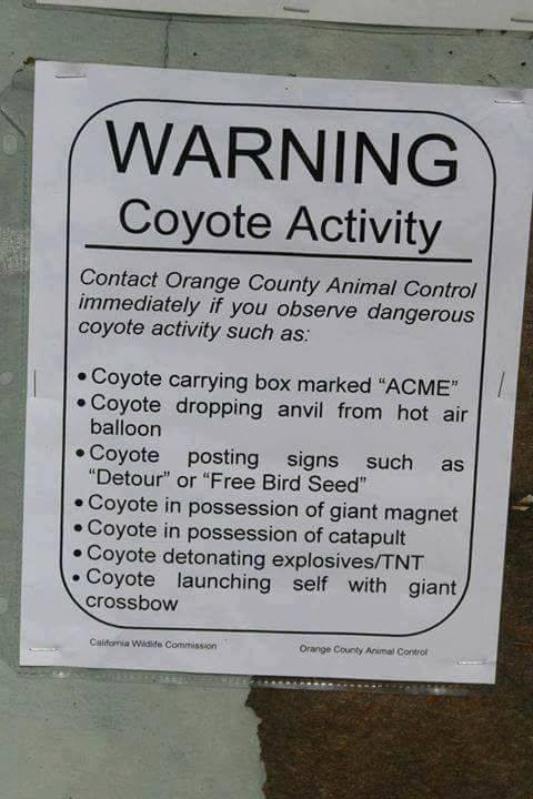 https://alvinalexander.com/sites/default/files/2017-04/warning-coyote-activity.jpg