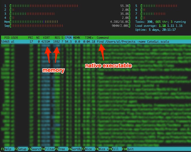 htop showing memory use for the GraalVM test