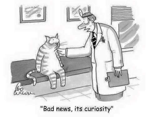 """Bad news, it's curiosity"" (cartoon) 