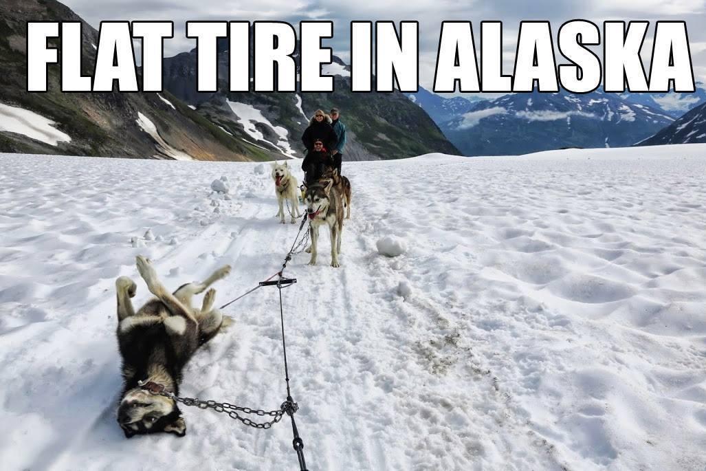 Alaska Quotes Looking For Alaska: Iditarod Funny - A Flat Tire In Alaska