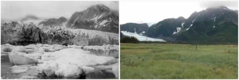 The disappearing Pedersen Glacier in Alaska