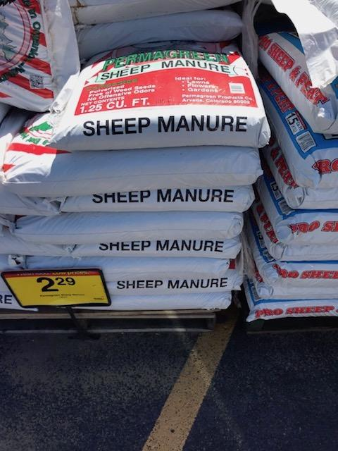 Sheep manure?