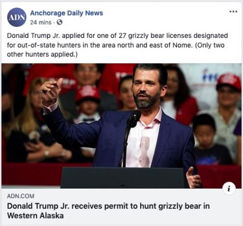 Donald Trump, Jr. has a license to kill grizzly bears in northern Alaska