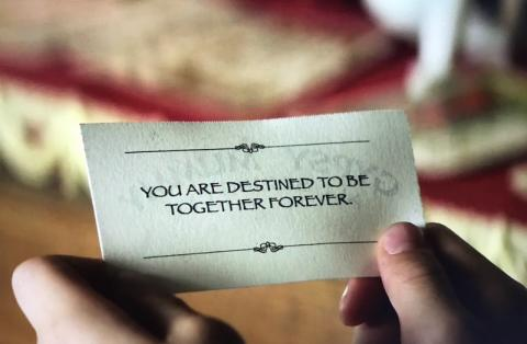 """You are destined to be together forever"""