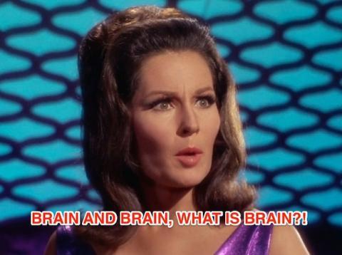 brain-and-brain-what-is-brain-star-trek.
