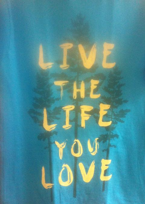 Live the life you love shirt