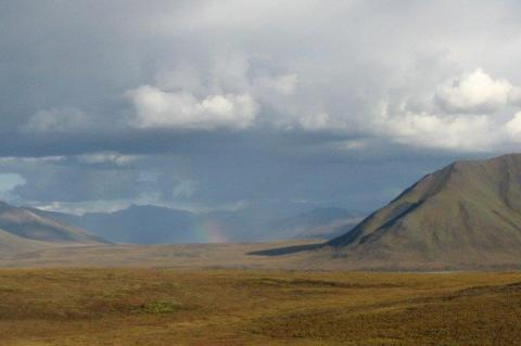 A rainbow over the hill, off the Dalton Highway, Alaska