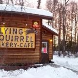 The Flying Squirrel Bakery Cafe, and Bernie