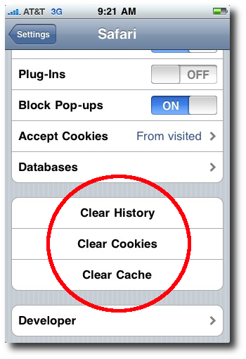 clear cookies on iphone how to delete specific pages from safari history ios 3465
