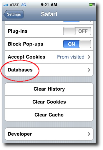 iPhone Safari databases button