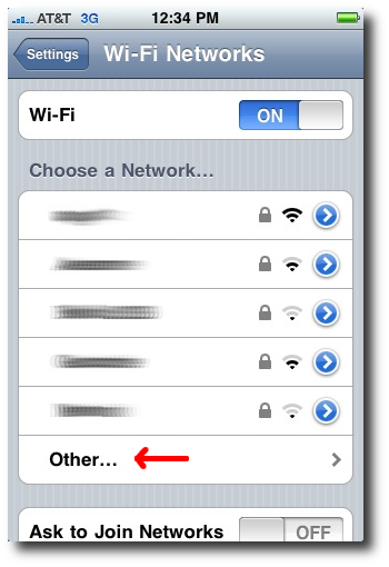 iPhone Wi-Fi network settings - Other option